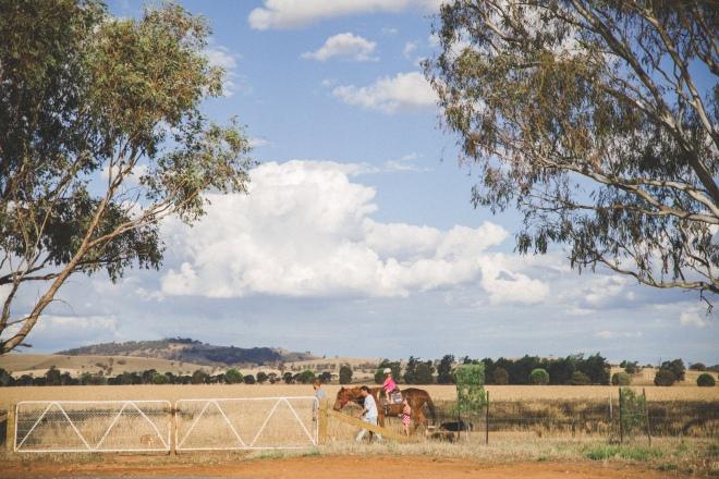 Farm-143